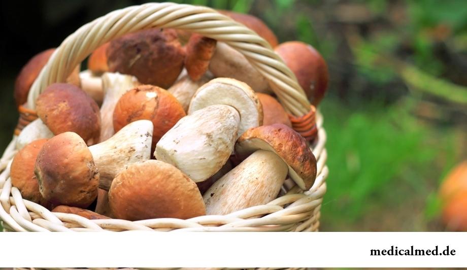 Настойка белых грибов