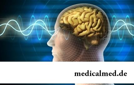 6 наиболее распространенных мифов о человеческом мозге