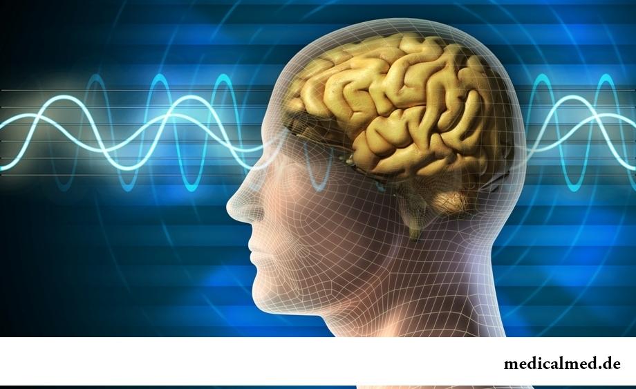 Ткань головного мозга имеет серый цвет - один из мифов о человеческом мозге