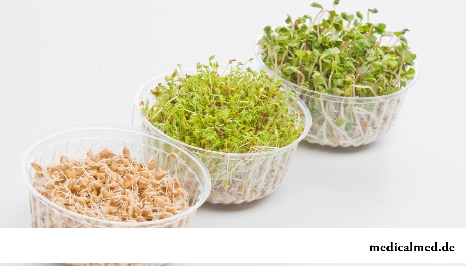 Как бороться с весенней усталостью: употреблять пророщенные семена