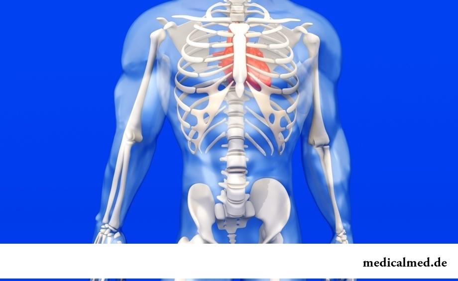 Роль жиров в организме человека