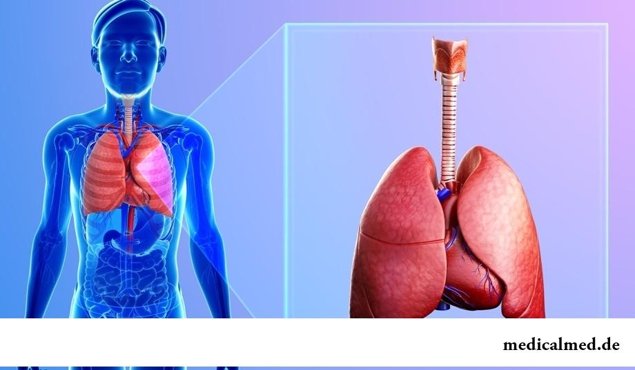 Тренировка органов дыхания