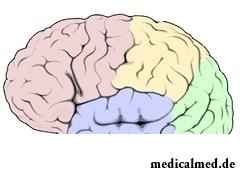 Афазия - повреждение речевых зон головного мозга
