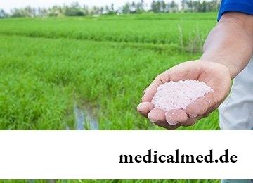 Азотемия - лечение и профилактика