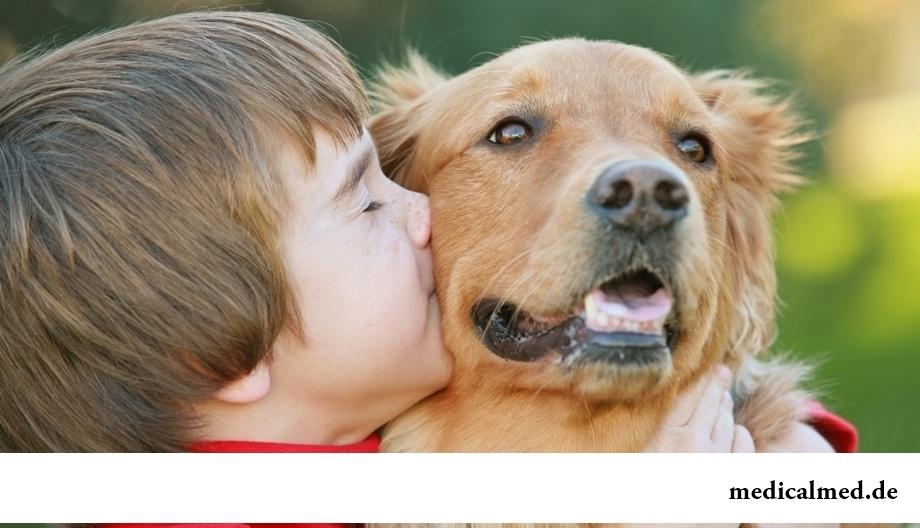 Насколько болезни животных опасны для людей?