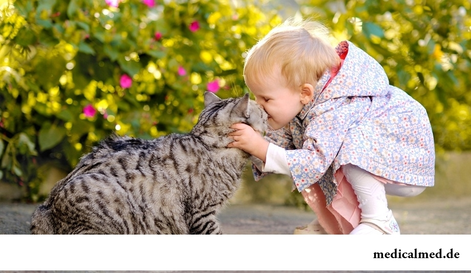 Дети и аллергия на животных: что делать?