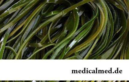 Морские водоросли: 6 причин для включения в рацион