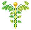 Альтернативная медицина: что выбрать