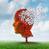 Болезнь Альцгеймера: симптомы и уход за больным