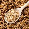 Целебная сила проросших зерен пшеницы