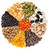 Разнообразие бобовых культур