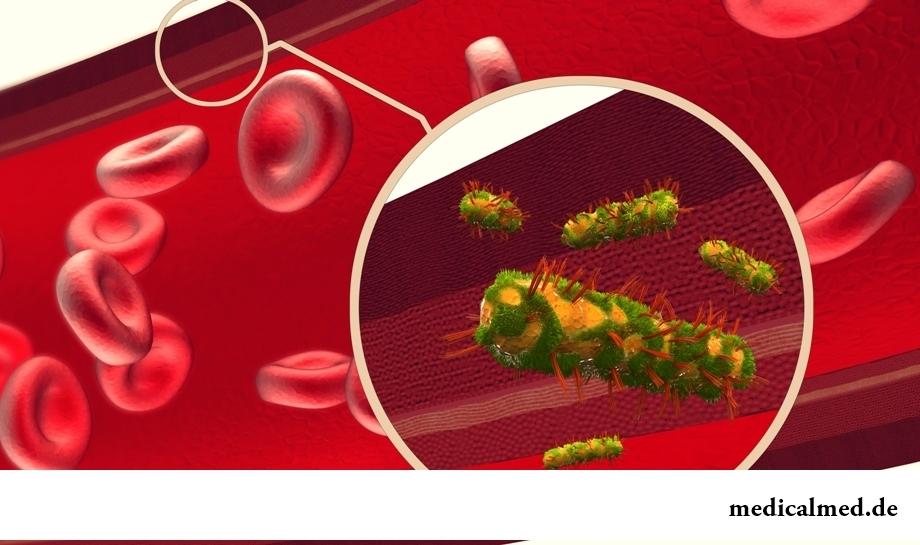 Очищение крови, сосудов и артерий